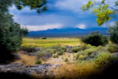 Corn_Creek_pano_