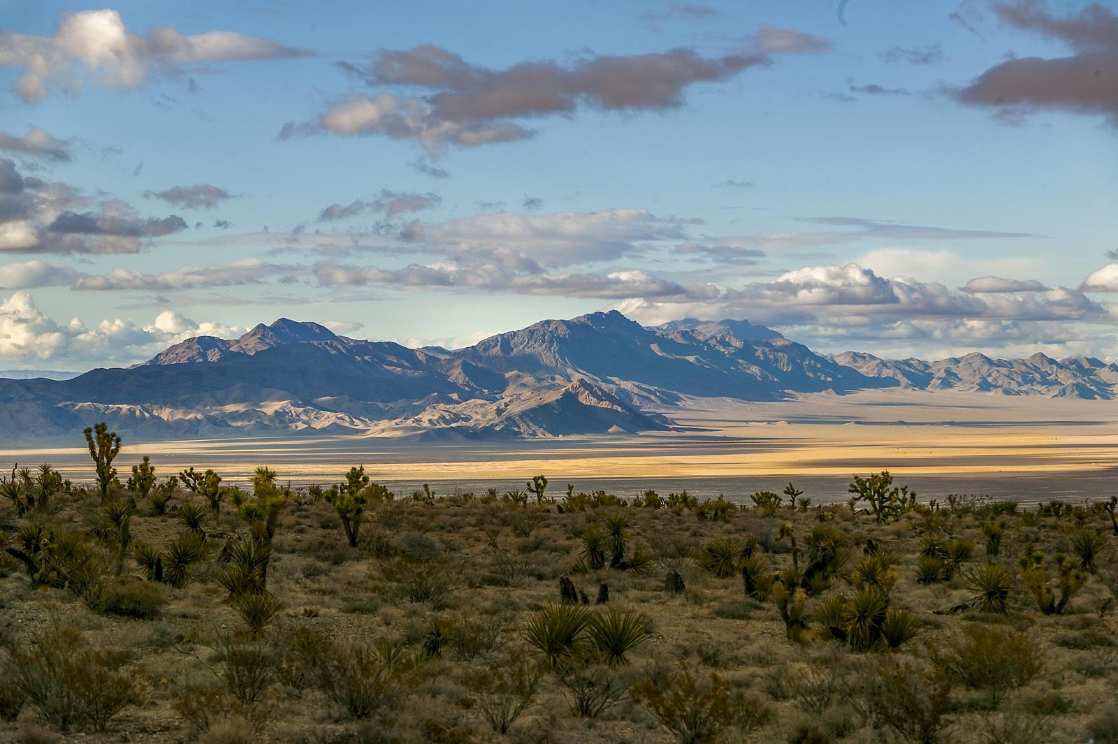 Nevada Scenic Landscape 806V4162 v1b Desert Vista Vcnty Hwy 95