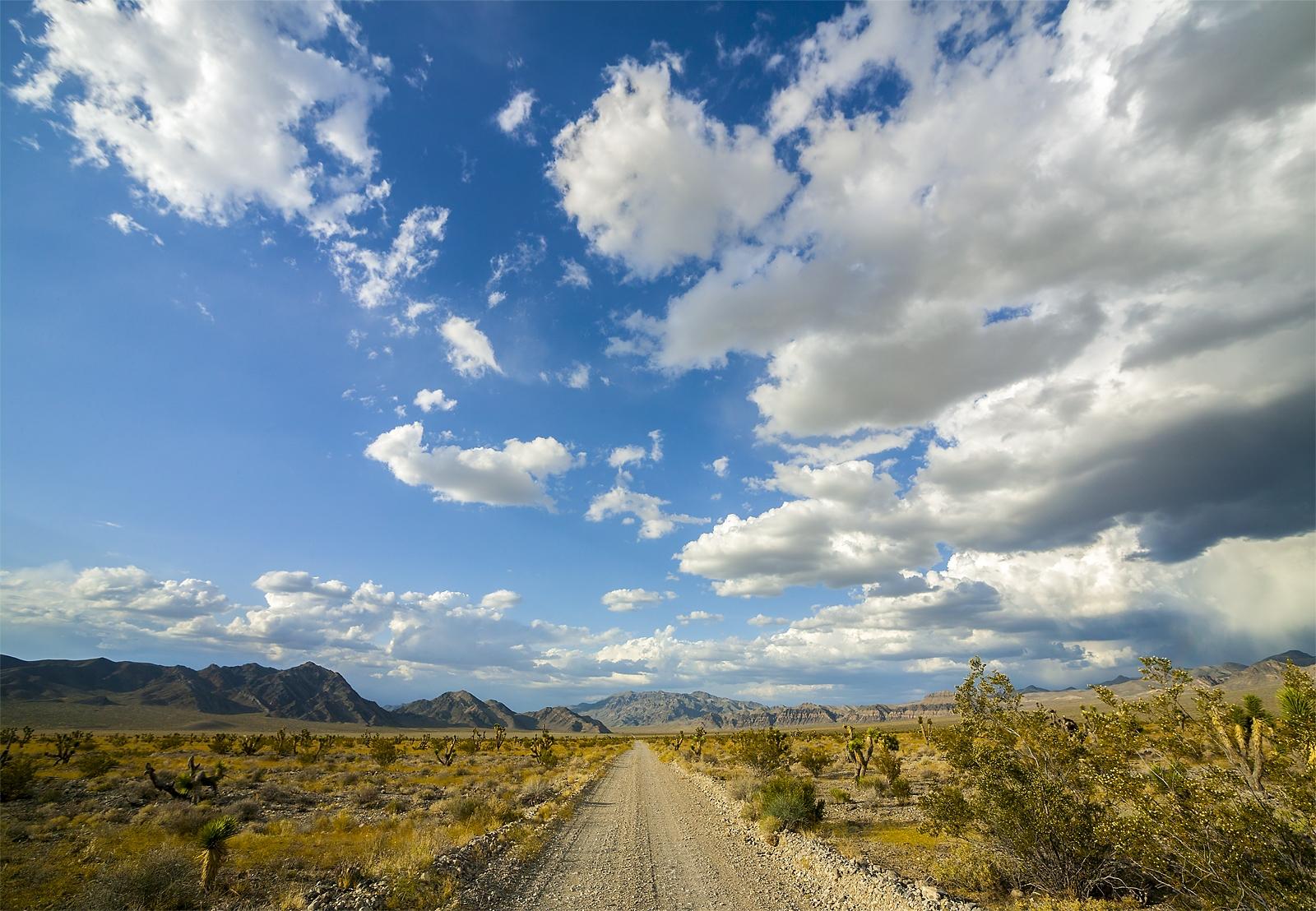 Nevada Scenic Landscape 806V6422_3_bc DNWR Alamo Road