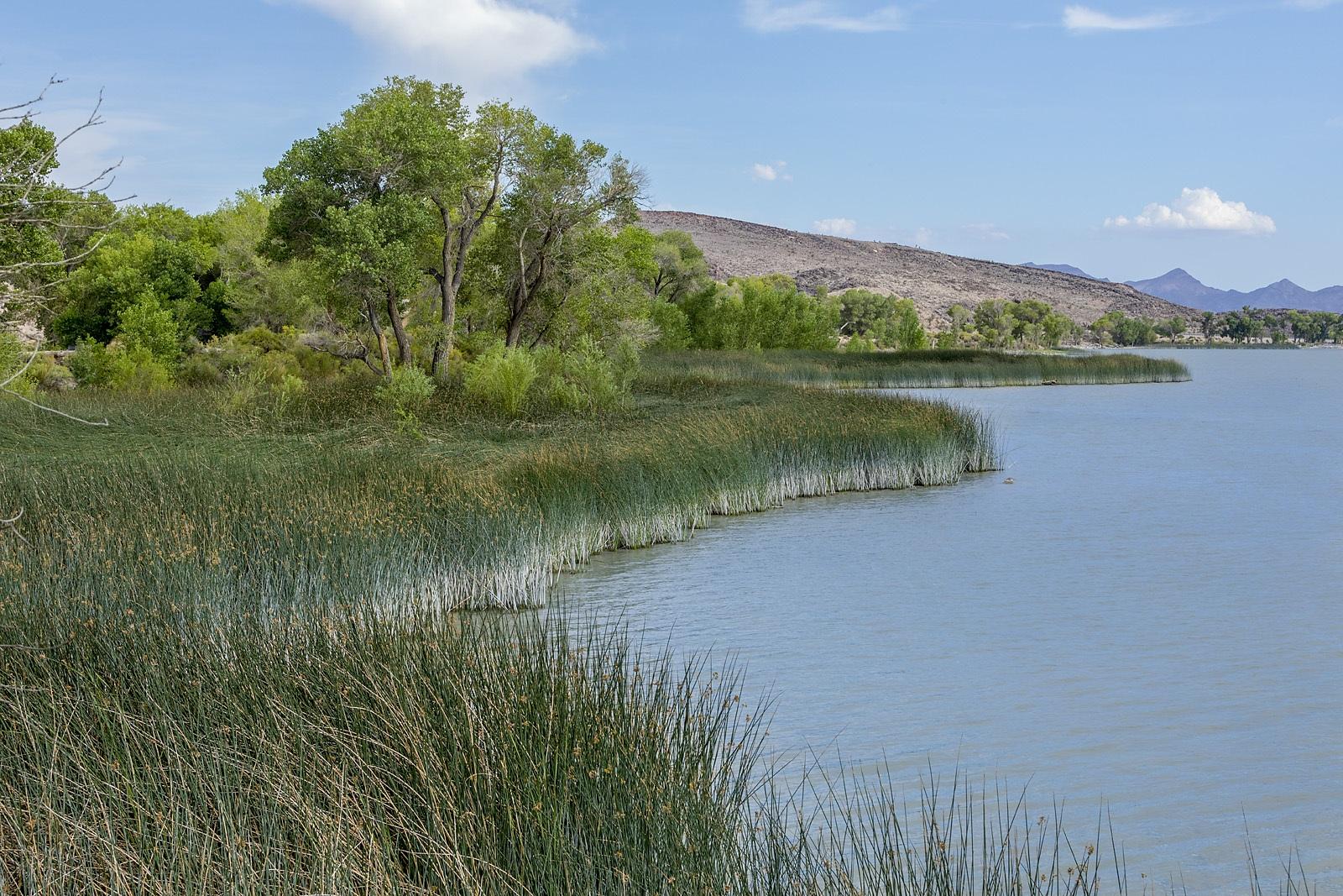 Nevada Scenic Landscape IMG 0702 v2  Pahranagat Lake