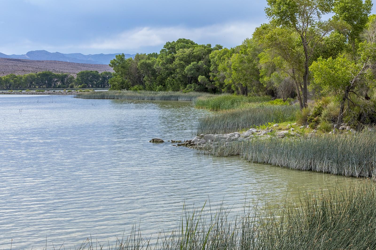 Nevada Scenic Landscape IMG_0705 Pahranagat Lake