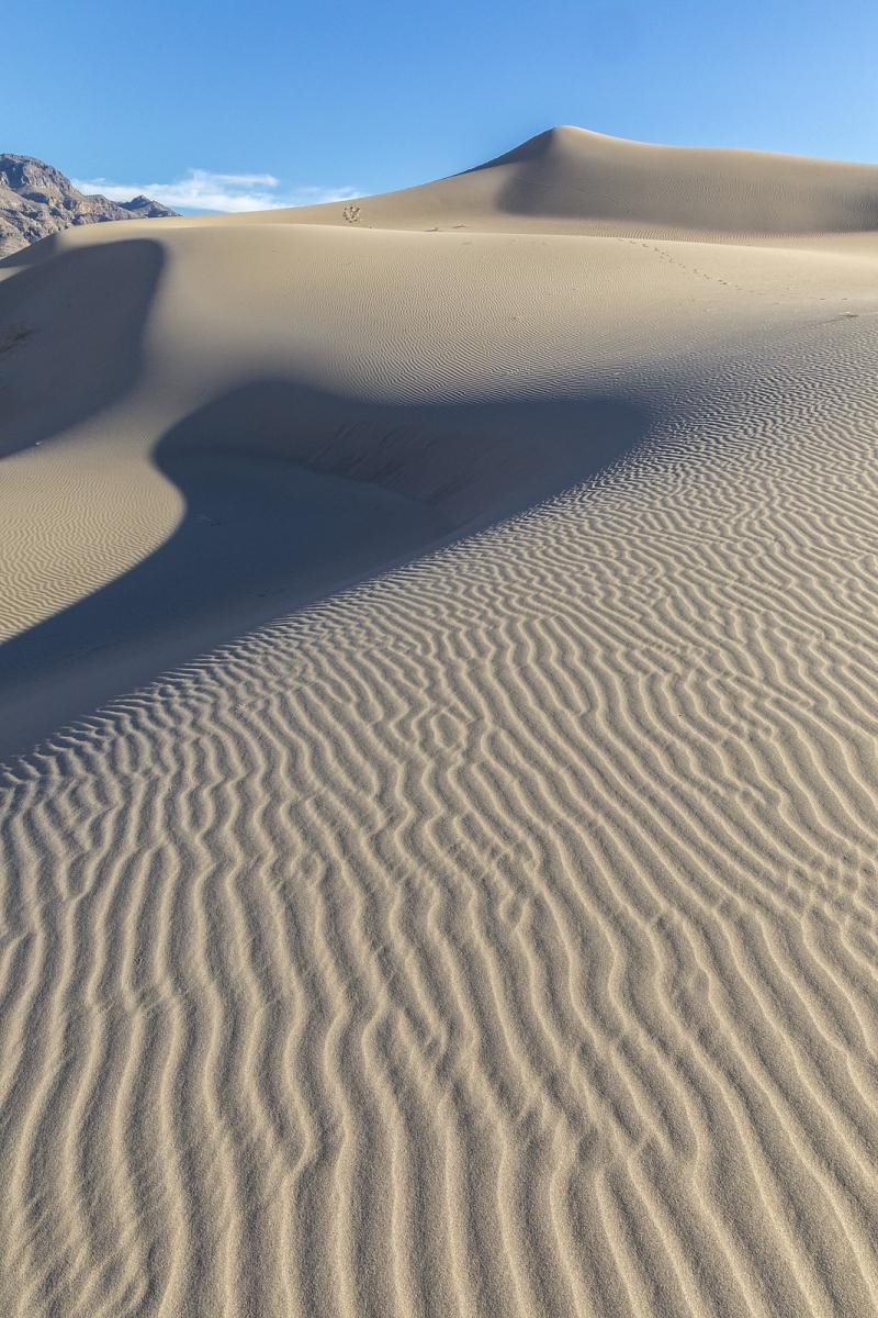 Nevada Scenic Landscape IMG 2759 Vcnty Desert Lake DNWR