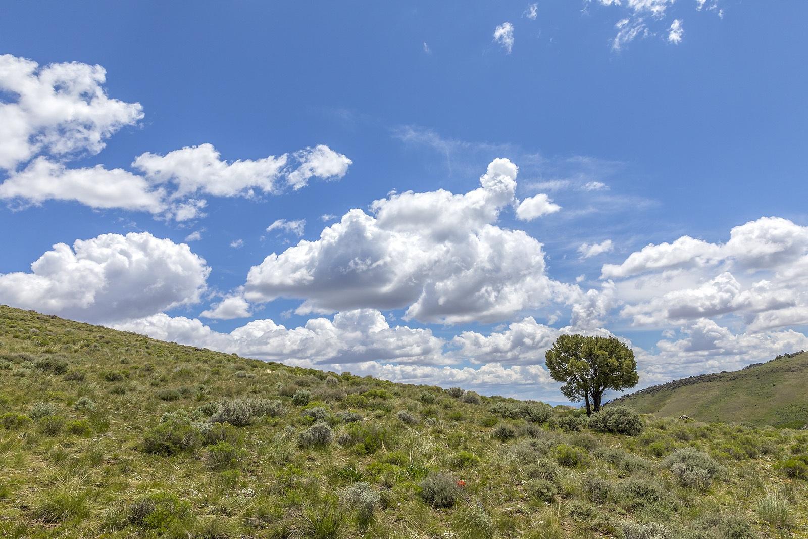 Nevada Scenic Landscape MG 3599 v2 Pancake Summit Vcnty Hwy 50