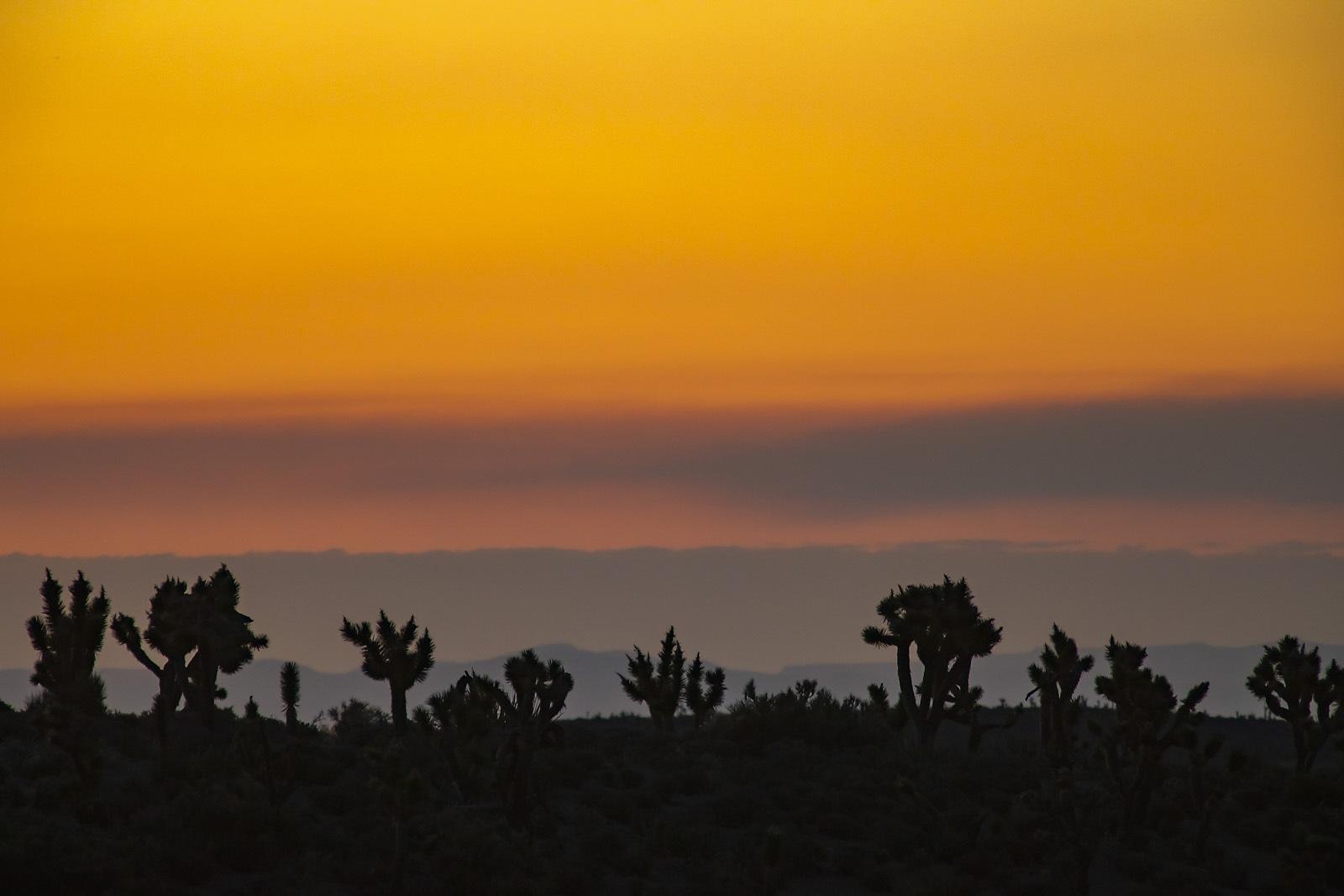 Nevada Scenic Landscape MG 4269 Desert Vista Vcnty Rte 156