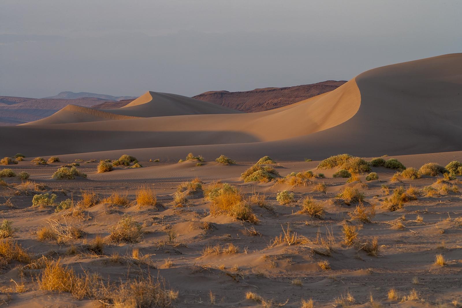 Nevada Scenic Landscape Q4G9503 Big Dune Vcnty Amargosa Valley