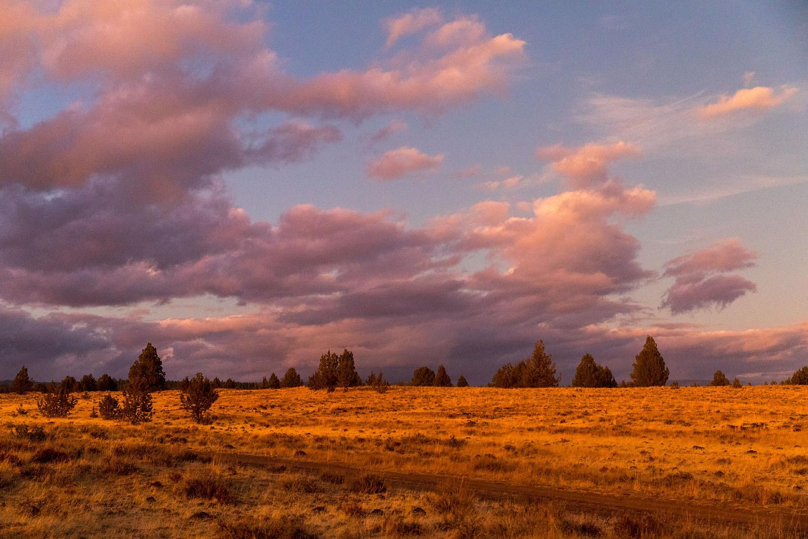 BSFAimages Scenic Landscape Vistas IMG_3740