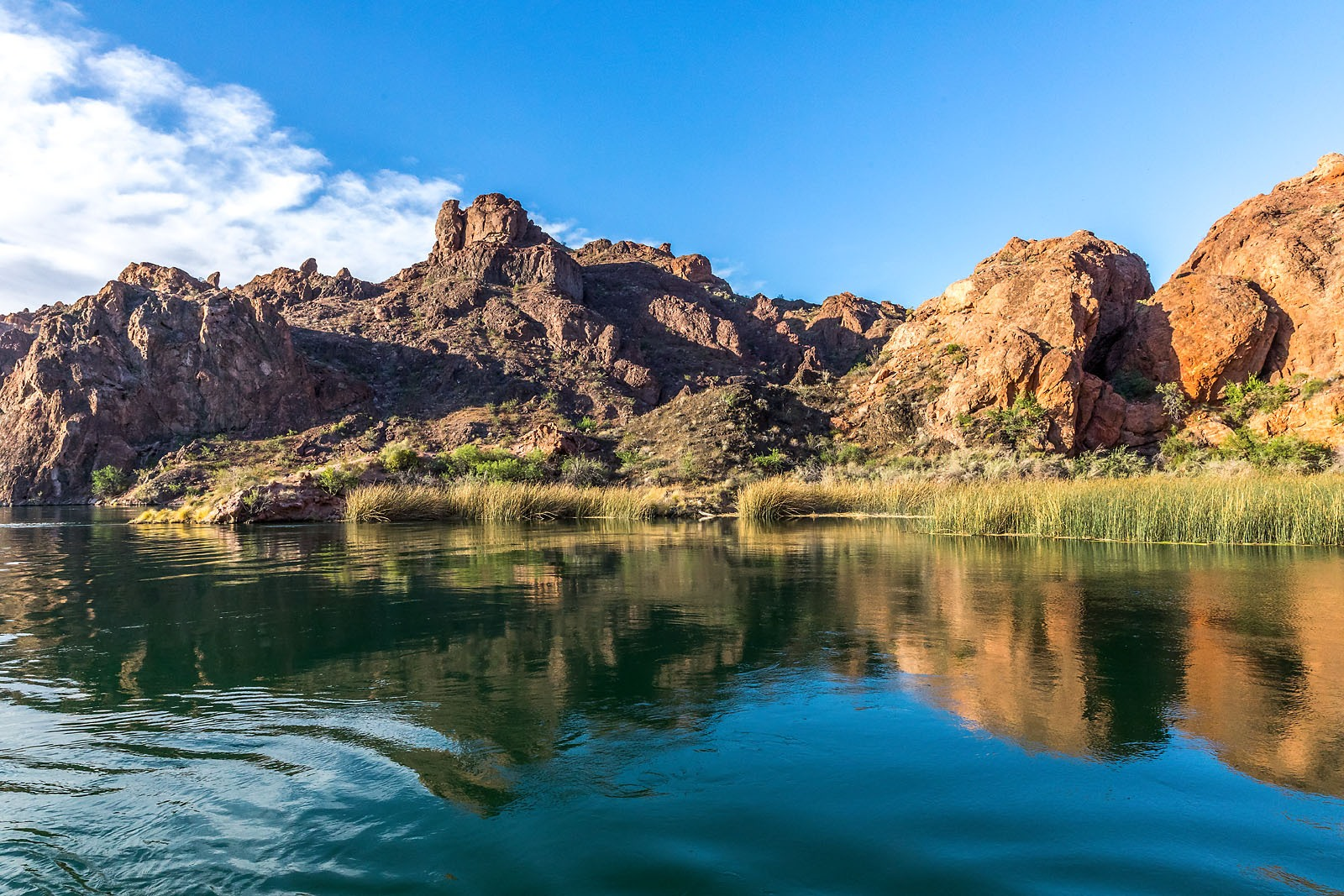 Colorado River Lake Havasu Arizona MG_0276__