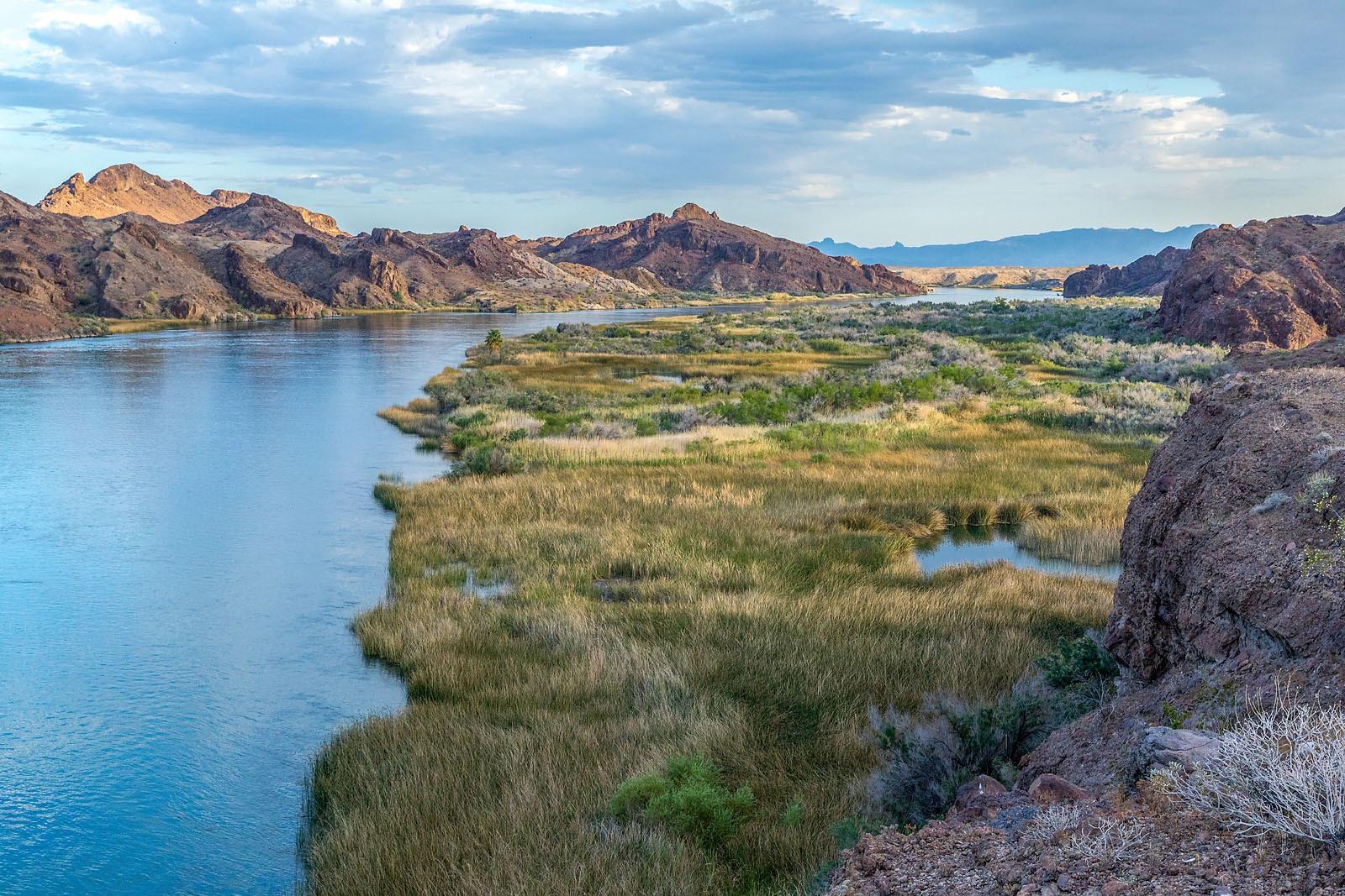 Colorado River Lake Havasu Arizona MG_0580__