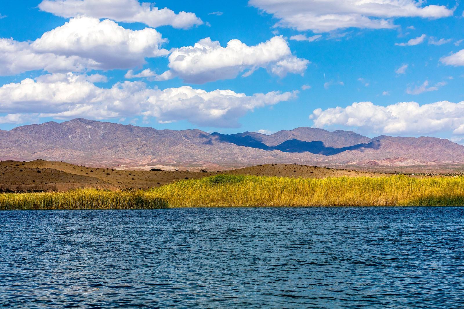 Colorado River Lake Havasu Arizona MG_1455_