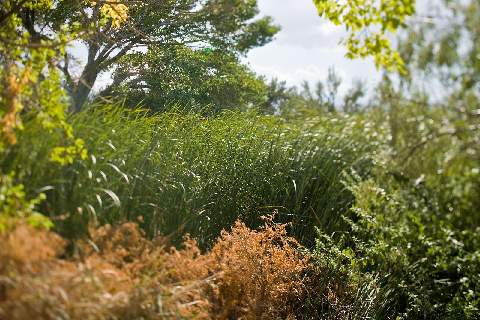 BSFAimages Scenic Landscape Vistas Q4G9855